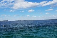 Florida Fishing 2